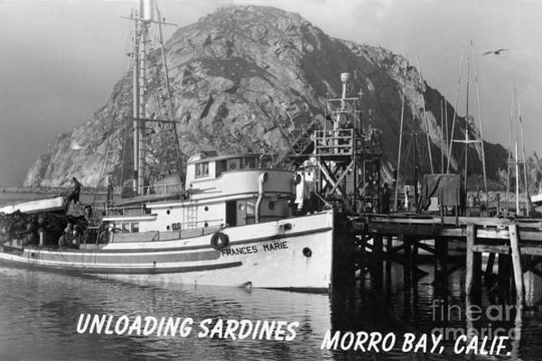 Photograph - Purse Seiner Frances Marie Unloading Sardines At Morro Bay, Calif. 1950 by California Views Archives Mr Pat Hathaway Archives
