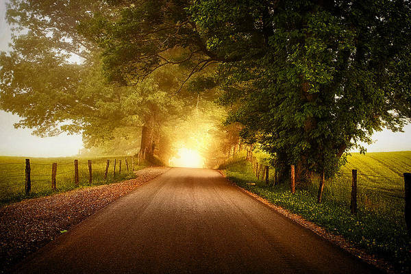 Cades Cove Photograph - Pursuing The Light by Andrew Soundarajan