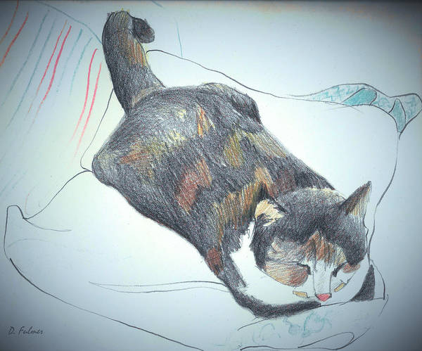 Drawing - Puss In Boots Sleeping by Denise F Fulmer