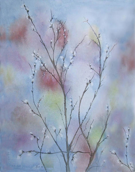 Pussy willow painting — img 3