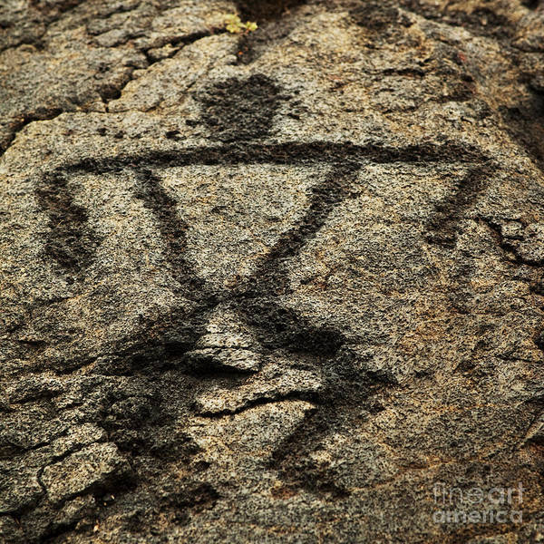 Photograph - Pu'u Loa Petroglyphs by Charmian Vistaunet