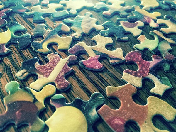 Photograph - Puzzle Pieces by SR Green