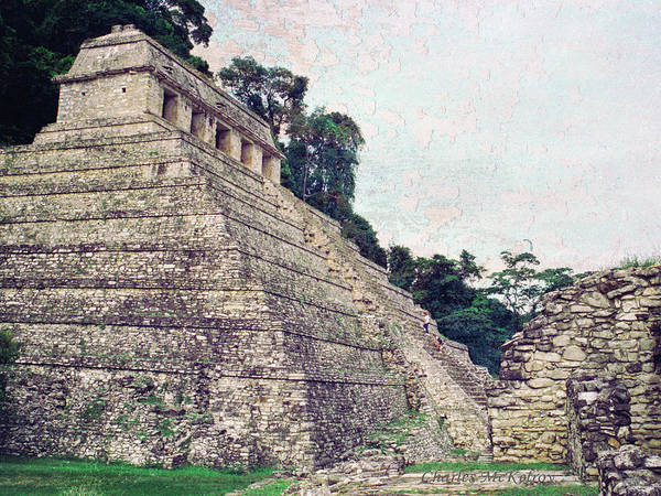 Photograph - Pyramid In Mexico by Charles McKelroy