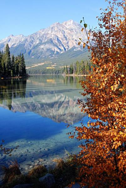 Photograph - Pyramid Mountain Reflection 2 by Larry Ricker