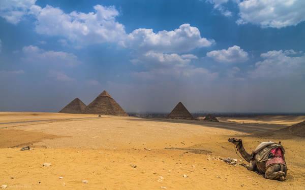 Photograph - Pyramids Of Giza  by Julis Simo