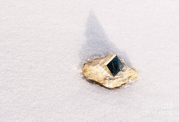 Photograph - Pyrite by Les Palenik