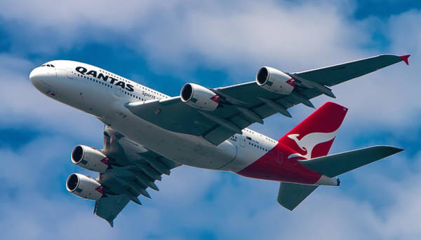 Belly Photograph - Qantas A380 by Mark Lucey