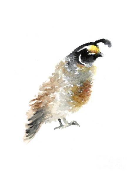 Quail Wall Art - Painting - Quail Bird Watercolor Painting by Joanna Szmerdt