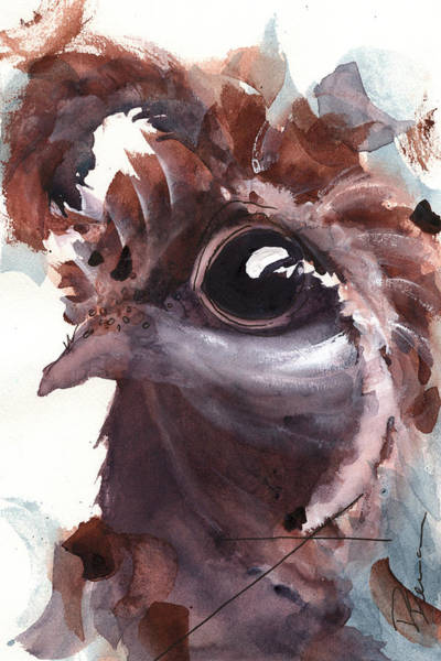 Painting - Quail by Dawn Derman