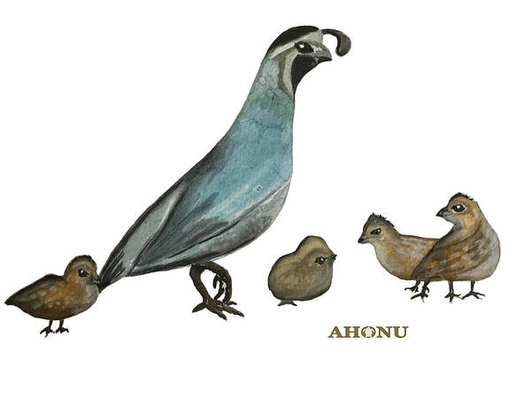 Painting - Quail Family by Ahonu