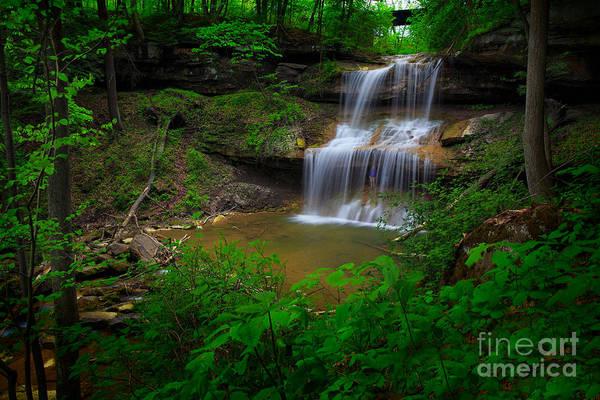 Photograph - Quakertown Falls by Emmanuel Panagiotakis