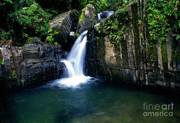 Photograph - Quebrada Juan Diego by Thomas R Fletcher