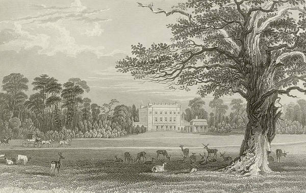 Black Buck Wall Art - Drawing - Queen Adelaides Lodge  by Thomas Allom