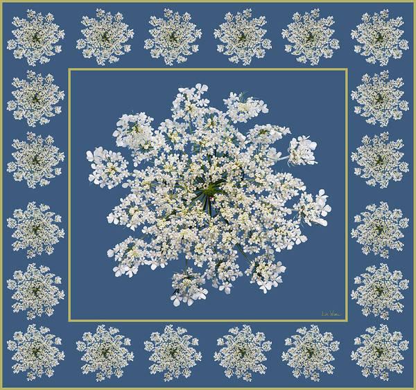 Digital Art - Queen Anne's Lace With Border by Lise Winne