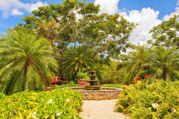 Photograph - Queen Elizabeth II Botanic Park by John M Bailey
