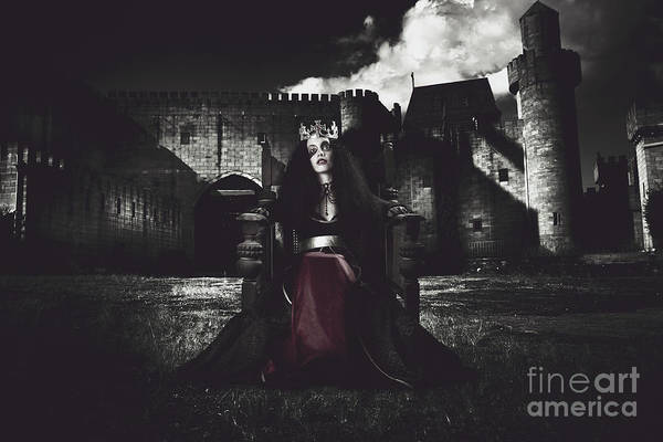 Photograph - Queen Of The Dark Monarch by Jorgo Photography - Wall Art Gallery