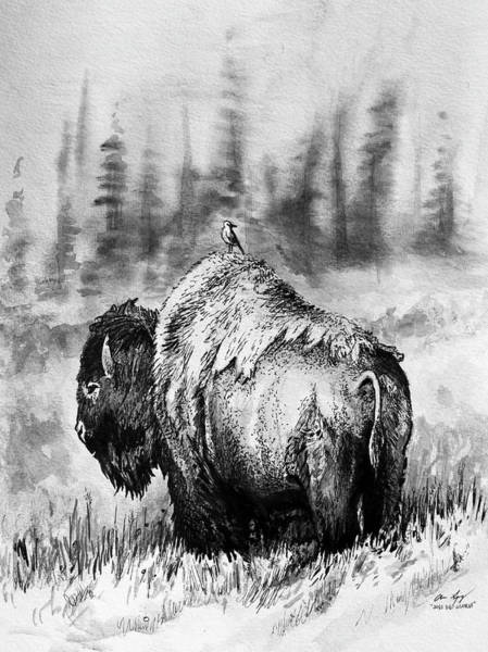 Drawing - Quick Sketch - Bison by Aaron Spong