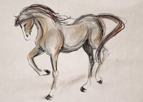 Warmbloods Drawing - Quickie by Jennifer Fosgate