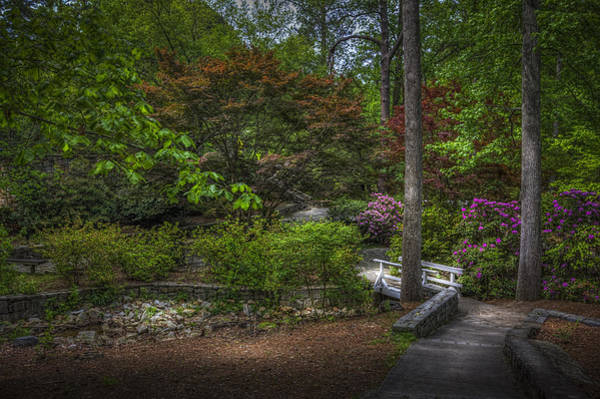 Wall Art - Photograph - Quiet Beauty by Marvin Spates