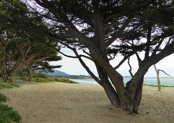 Carmel By The Sea Photograph - Quiet Carmel Beach by Gordon Beck