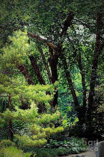 Photograph - Quiet Corners In The Park by Patti Whitten