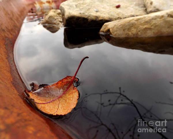 Photograph - Quiet Corners  by Viviana  Nadowski