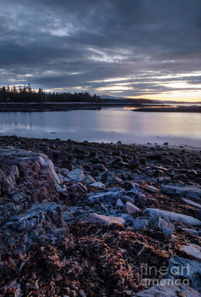 Photograph - Quiet Dawn, Southwest Harbor, Maine #40131-40132 by John Bald