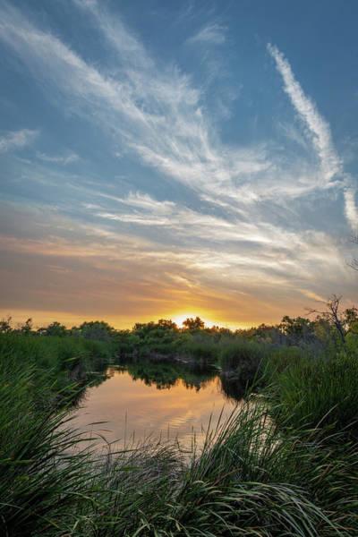 Photograph - Quiet Lake by TM Schultze