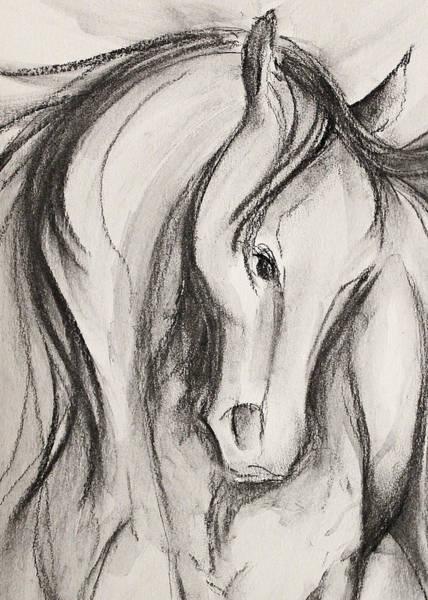 Warmbloods Drawing - Quiet Partner by Jennifer Fosgate