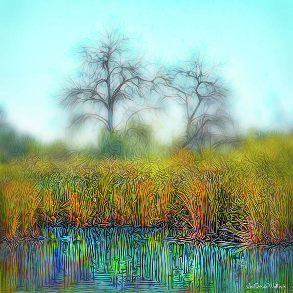 Digital Art - Quiet Pond Atmosphere by Joel Bruce Wallach