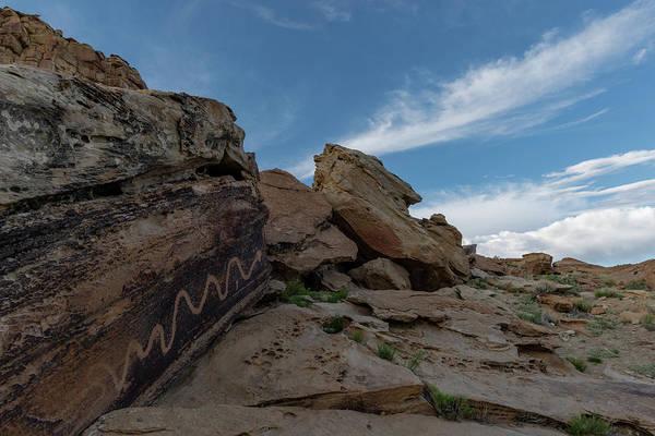 Photograph - Quiet Serpent by TM Schultze