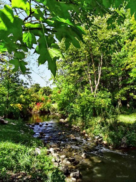 Photograph - Quiet Stream by Susan Savad