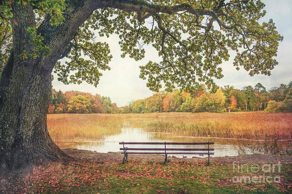 Pond Photograph - Quiet Time by Evelina Kremsdorf