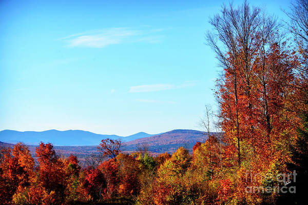 Photograph - Quill Hill  by Alana Ranney