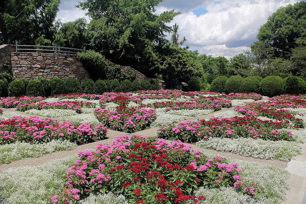 Photograph - Quilt Garden by Allen Nice-Webb