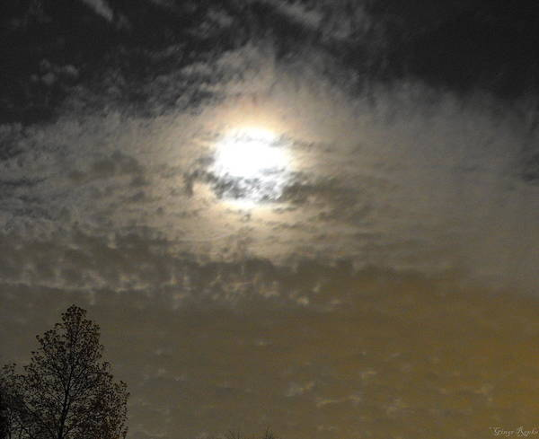 Saint Louis County Photograph - Quilted Moon by Ginger Repke