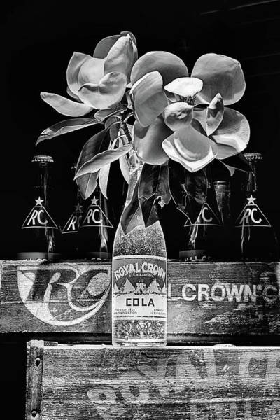 Flowers In A Vase Photograph - R C Cola And Magnolia Still Life In Black And White by JC Findley