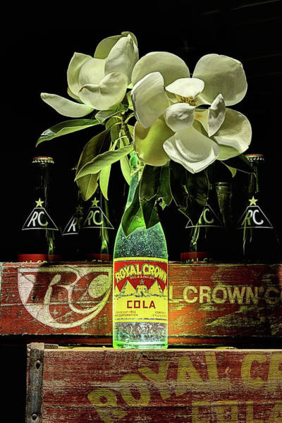 Flowers In A Vase Photograph - R C Cola And Magnolia Still Life by JC Findley