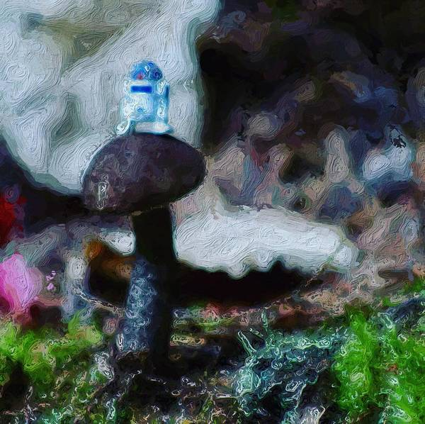 Galactic Empire Photograph - R2d2 Lost In The Woods by Modern Art