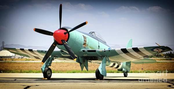 Hawker Sea Fury Photograph - Raaf Hawker Sea Fury by Gus McCrea