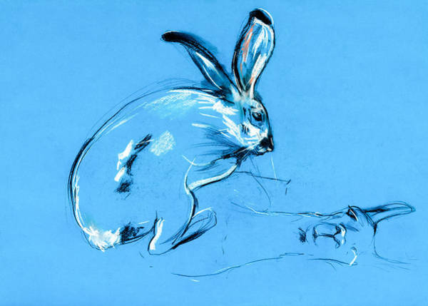 Chinese New Year Rabbit Wall Art - Pastel - Rabbit And Llama Painting  By Ivailo Nikolov by Boyan Dimitrov