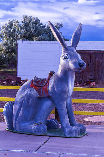 Rabbit Photograph - Rabbit Ride Route 66 by Garry Gay