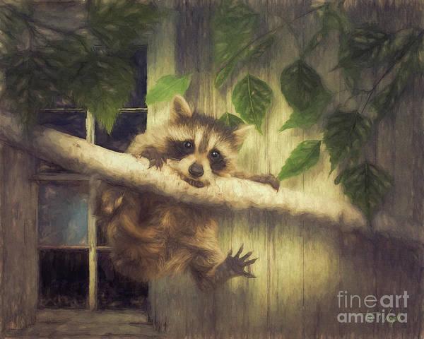 Digital Art - Raccoon Hangin' Around by Tim Wemple