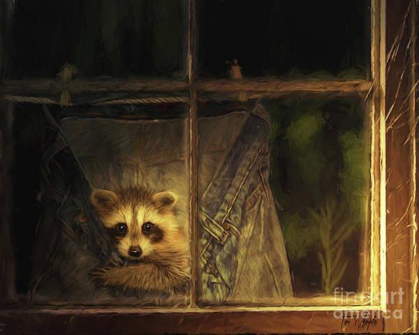 Raccoon Pants Art Print