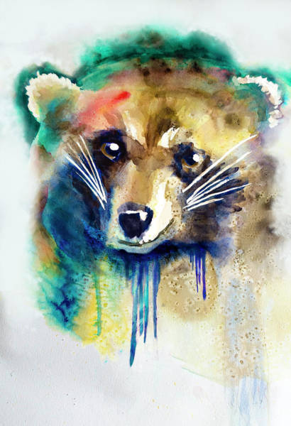 Painting - Raccoon by Rick Mosher