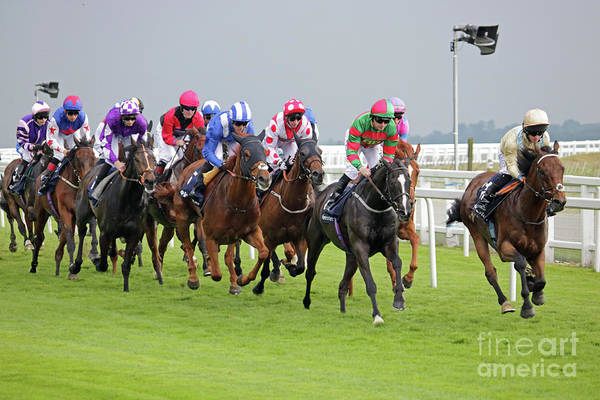 Photograph - Racing At Epsom Downs By Julia Gavin by Julia Gavin