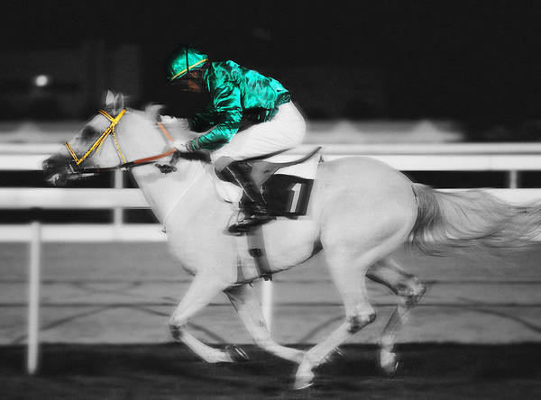 Photograph - Racing For The Post by Paul Cowan