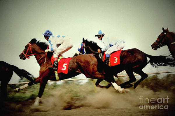 Photograph - Racing Horses Neck To Neck In Competition by Dimitar Hristov