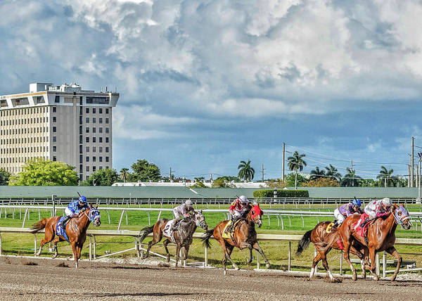 Photograph - Racing  by Mike Dunn