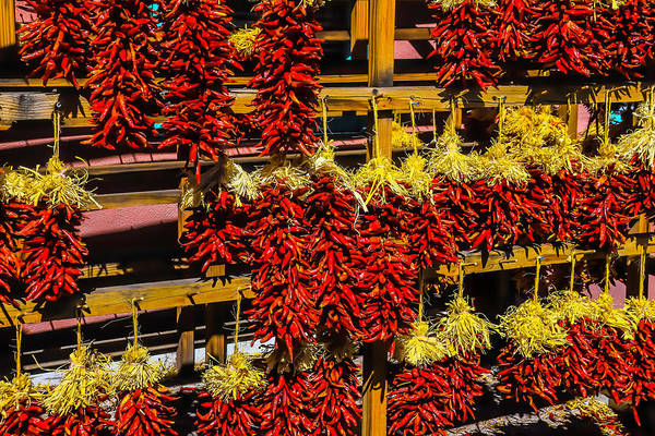 Wall Art - Photograph - Racks Of Chili Peppers by Garry Gay